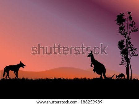 a dingo hunting kangaroos in the sunset - stock vector