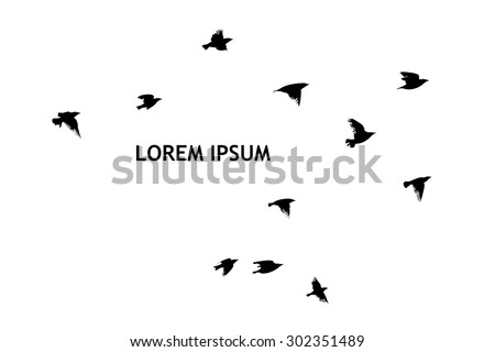 A flock of flying birds. starlings. vector - stock vector