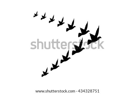 a flock or group of birds flying in the shape of a triangle, black and white vector