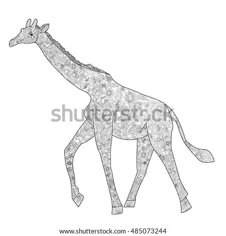 Giraffe Coloring Book Adults Vector Stock Vector 485073244 ...
