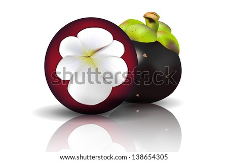 a half cut Mangosteen with shadows on white background