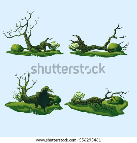 Fallen Tree Stock Images, Royalty-Free Images & Vectors | Shutterstock
