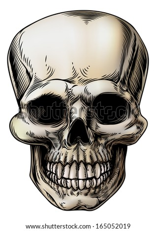 A human Skull or grim reaper skeleton head illustration in a vintage style - stock vector