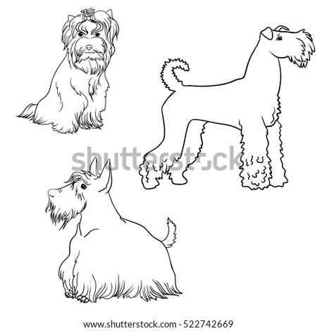 A line art set of dogs different kinds of terriers