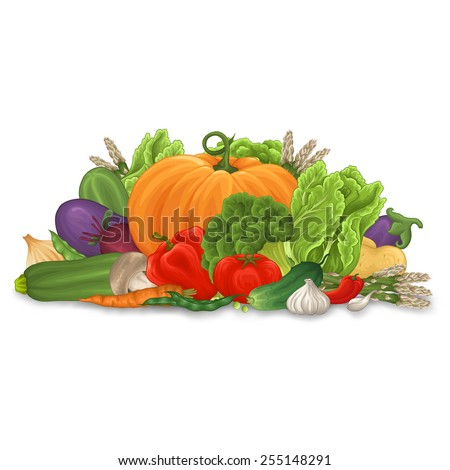 A lot of different vegetable with shadow on white background. - stock vector