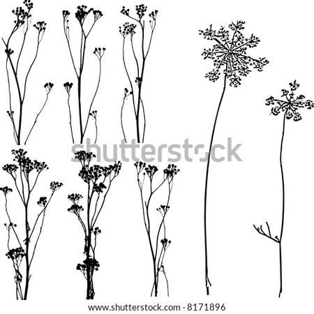 A lot of herbs and flowers silhouettes - stock vector