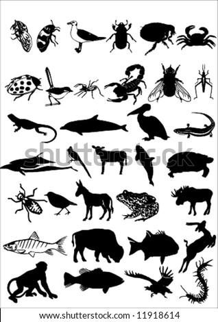 a lot of high quality traced animal silhouettes