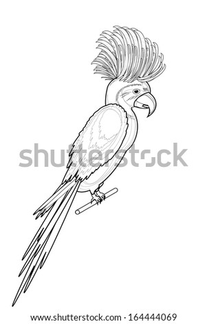 A monochrome sketch of macaw parrot isolated on a white background. Vector-art illustration - stock vector