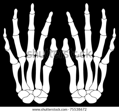 A Pair of Skeleton Hands Isolated on Black