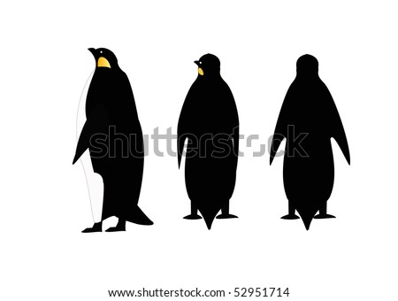A Penguin In Three Poses On A White Background Isolated - stock vector