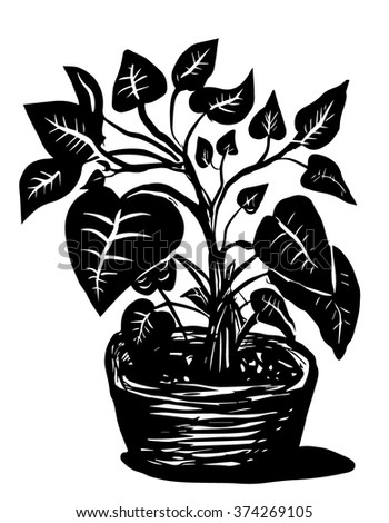 A plant in a pot - stock vector