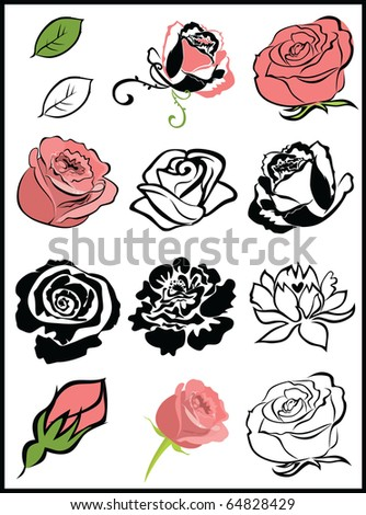 a rose flowers - stock vector