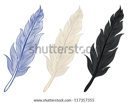 A set of illustrations of feathers - stock vector