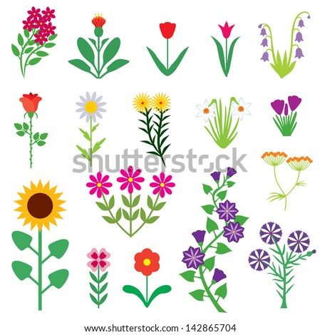 Set Images Different Flowers Stock Vector 142865704 ...