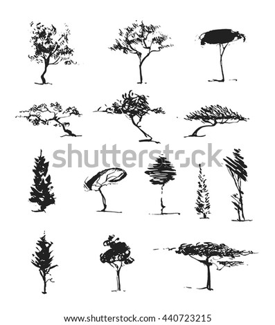 A set of several different trees. The black silhouette of a tree isolated on a white background. Trees painted with a brush in hand. The expressive technique. Collection of vector trees.