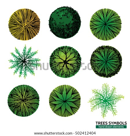 A Set Of Trees Symbols Top View Use In Your Landscape Designhand