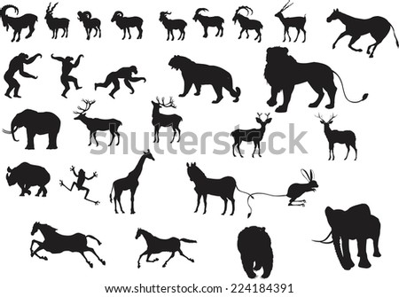 A set of vector animals silhouettes