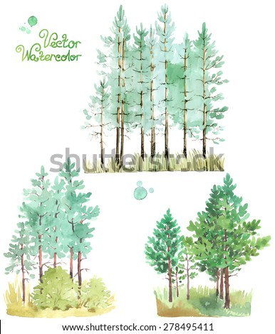 A set of watercolor green pine trees. Vector illustration.