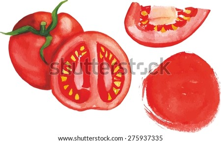 A set of watercolor tomato design elements: a whole tomato, a half, a slice and a circle, scalable vector graphic - stock vector