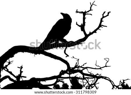 A silhouette of a raven sitting on a tree. Vector illustration. - stock vector