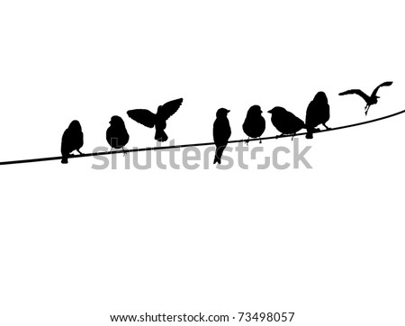 Silhouette Birds On Wire Vector Illustration Stock Vector ...
