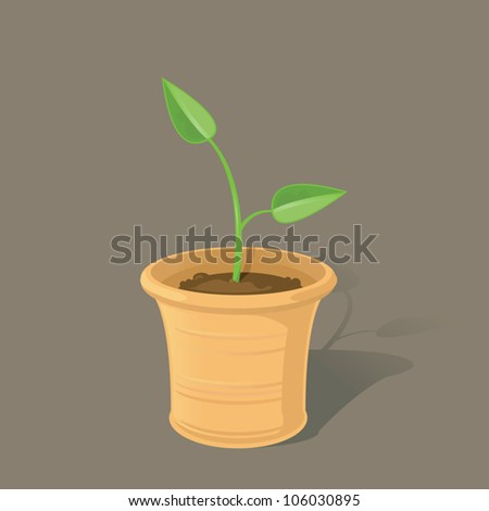 A single spring seedling growing in a terracotta plant pot.