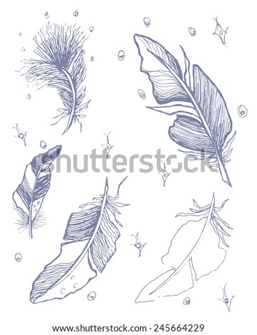 A sketch drawing of stylized feathers and stars - stock vector