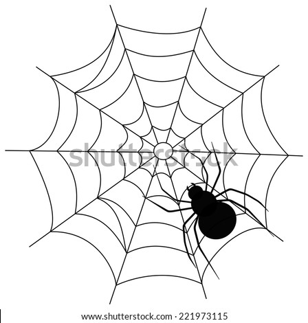 a spider on a web - stock vector