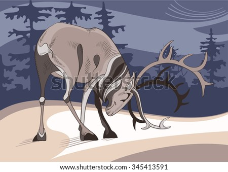 A strong antlered reindeer on background of winter taiga - stock vector
