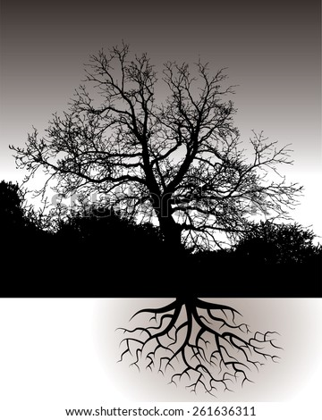 A Tree with Roots Landscape - stock vector