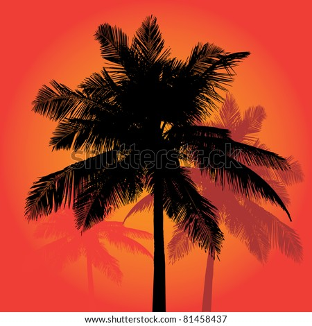 A trio of tropical coconut palm tree silhouettes illustration in vector format. - stock vector