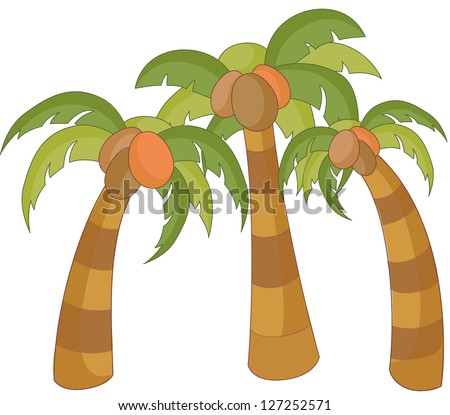 A vector illustration of coconut palm trees