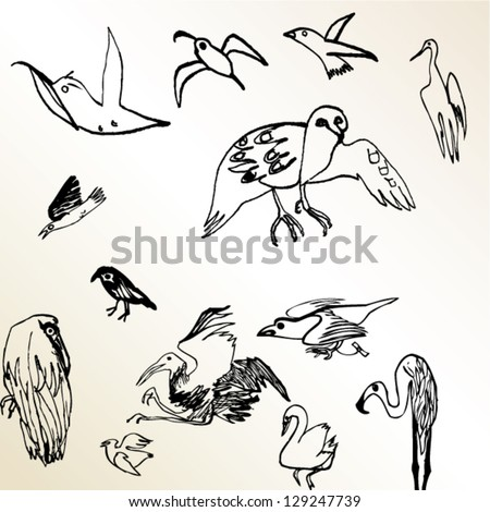 A vector illustration of different kinds of birds. - stock vector