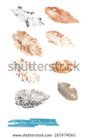 A vector watercolor: painting of autumn leaves of ash tree made as watercolor monotype - stock vector