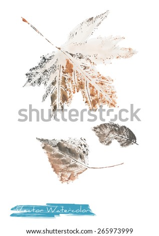 A vector watercolor: painting of autumn leaves of maple tree, poplar tree and ash tree made as watercolor monotype - stock vector