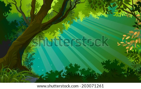 A view through a natural window of forest into the magical rays - stock vector