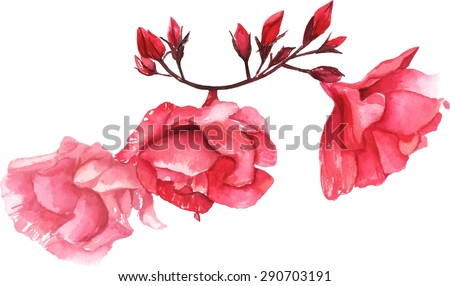 A vintage style watercolour drawing of a branch of pink peonies, scalable vector graphic - stock vector