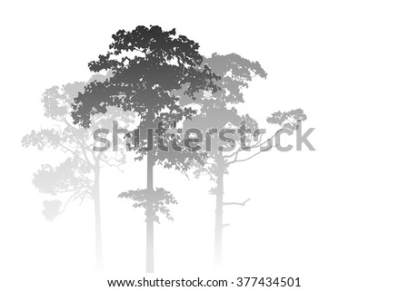 A White Misty Forest Landscape with Trees - stock vector