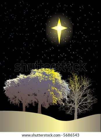 A winter scene of trees and a bright star - stock vector