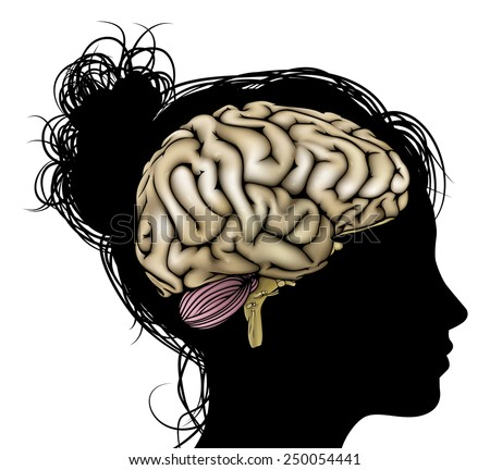A womans head in silhouette with brain. Concept for mental, psychological, brain development, learning and education or other medical theme - stock vector