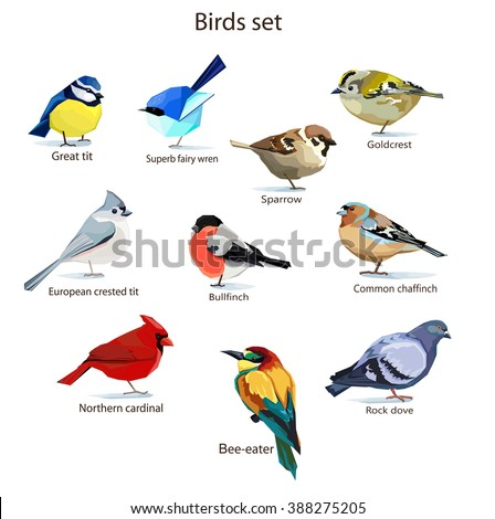 Abstract art bird, Logo birds icon set vector illustration, Rock dove bird, European crested tit bird, Goldcrest bird, Common chaffinch bird, sparrow bird, Red Cardinal bird, bullfinch. Birds set - stock vector