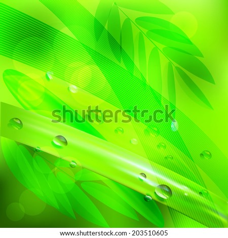 abstract background green leaves and water drop.vector background - stock vector
