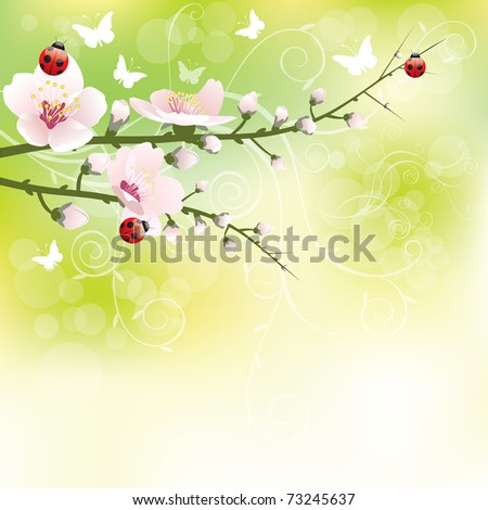 Abstract blossoming background in spring - stock vector