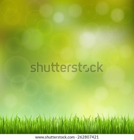 abstract bokeh and lens flare pattern with natural green grass background (vector)