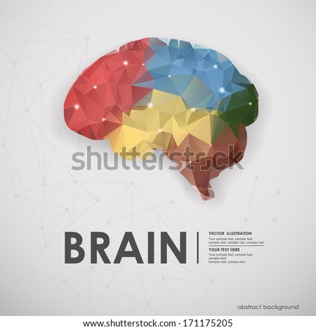 Abstract colored polygons of the human brain background. Vector illustration, icon - stock vector