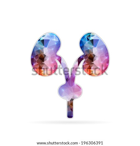 Abstract Creative concept vector icon of renal system  - stock vector