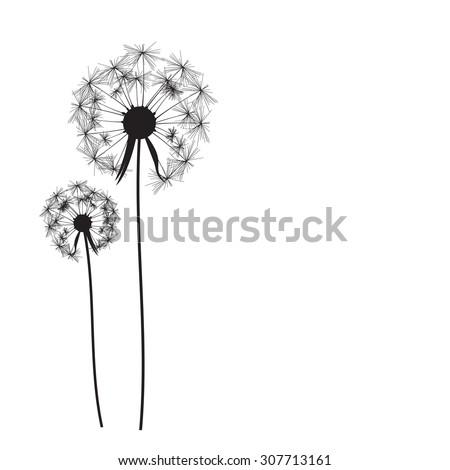 Abstract Dandelion Background Vector Illustration EPS10 - stock vector