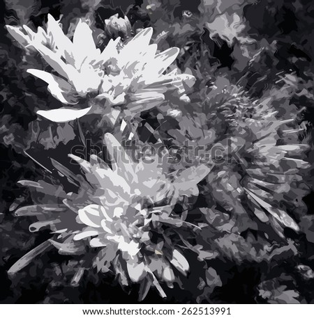 Abstract floral black and white background with stylized chrysanthemums - stock vector