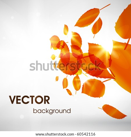 Abstract fly leafs vector background - stock vector