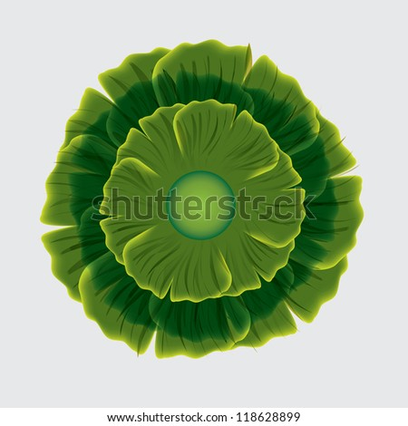 Abstract green flower on white background.vector - stock vector